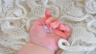 赤ちゃんの手に羽